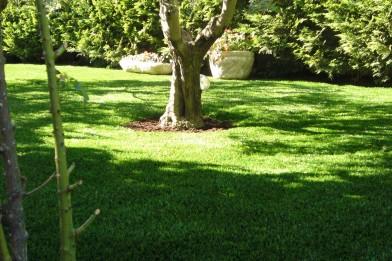 Création en pelouse artificielle : Spécialiste du jardin