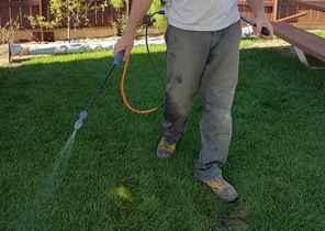 Désherber et nettoyer le sol 2