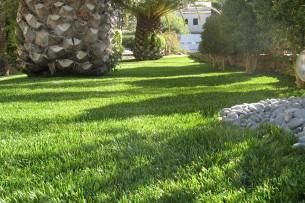 Création en pelouse artificielle : Achat et pose de gazon synthétique sur Istres