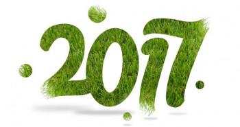 Illustration de La saison 2017 du gazon synthétique est ouverte !