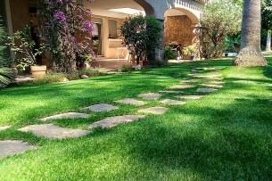 Création en pelouse artificielle : Pose d'un gazon synthétique Français Azurio dans le VAR