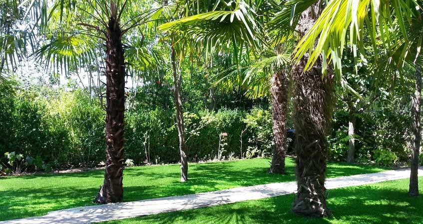 Illustration de Les experts de la pelouse synthétique sur l'île de La Réunion